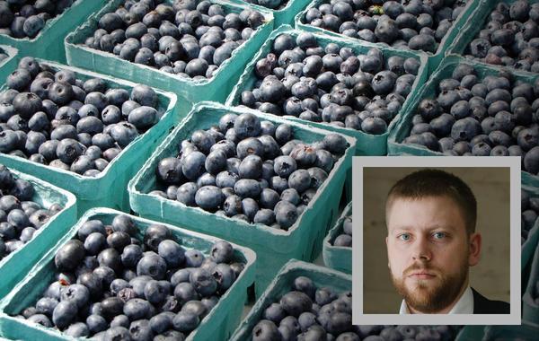 Дмитрий Ходас. Как мы торговали дикой ягодой и вышли на биржу