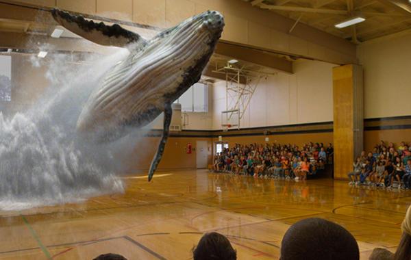Волшебный пузырь: Как Magic Leap подняла $1,4 млрд, не имея продукта