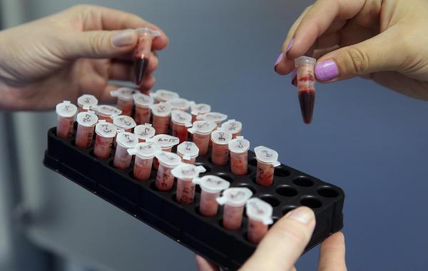 Пять российских компаний, которые занимаются анализом ДНК