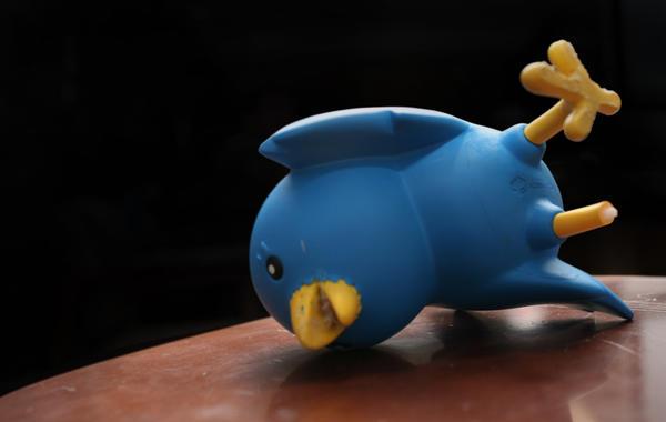 Птичку жалко: Почему Twitter не переживёт 2017 год