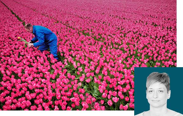 7 фактов о том, как не надо заниматься цветочным бизнесом