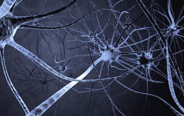 5 необычных применений нейросетей