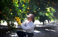 Хорошая жена и везение: Как внук украинского мигранта стал главным фермером США