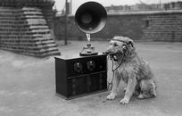 Зачем вашей компании своё радио