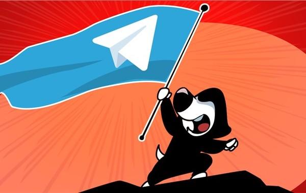 Telegram потерял 20% аудитории в России