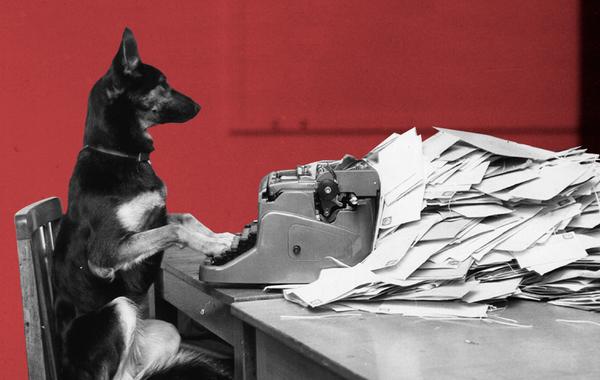 Как написать письмо, на которое ответят