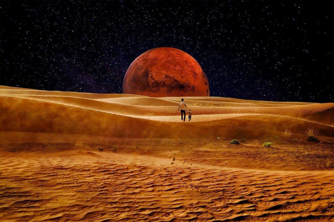 Илон Маск поднял почти на 3000% стоимость монеты для марсианской экономики