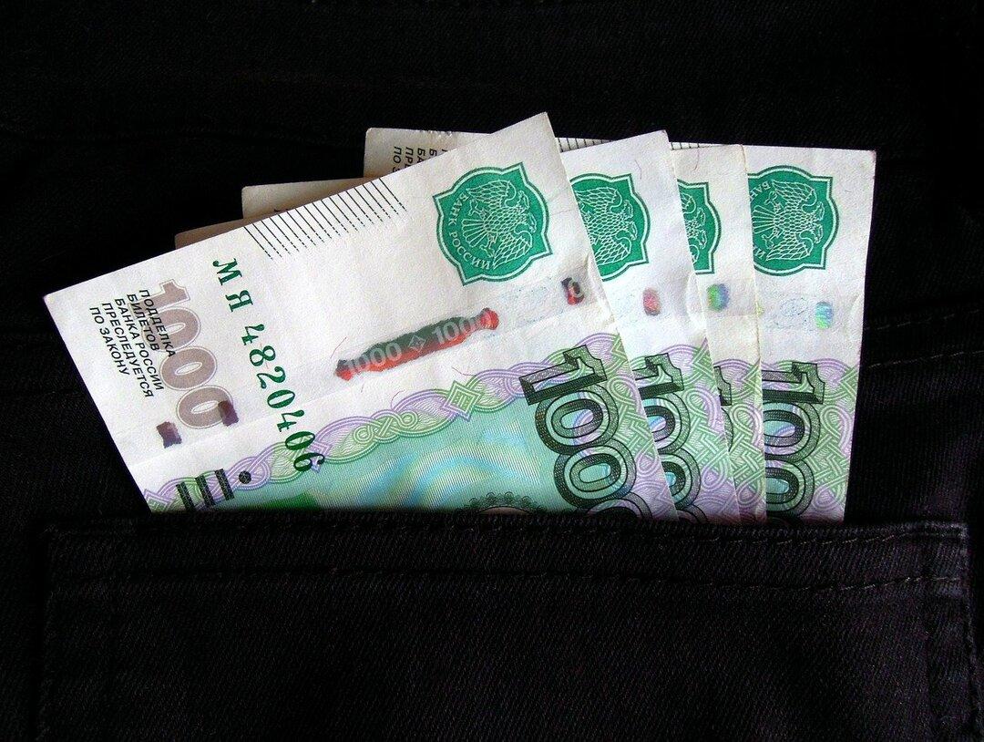 В России предложили выдавать маткапитал живыми деньгами