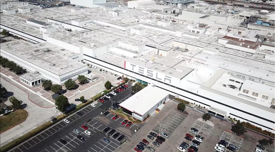 На заводе Tesla 450 рабочих заразились COVID-19. Маск открыл его вопреки запрету властей