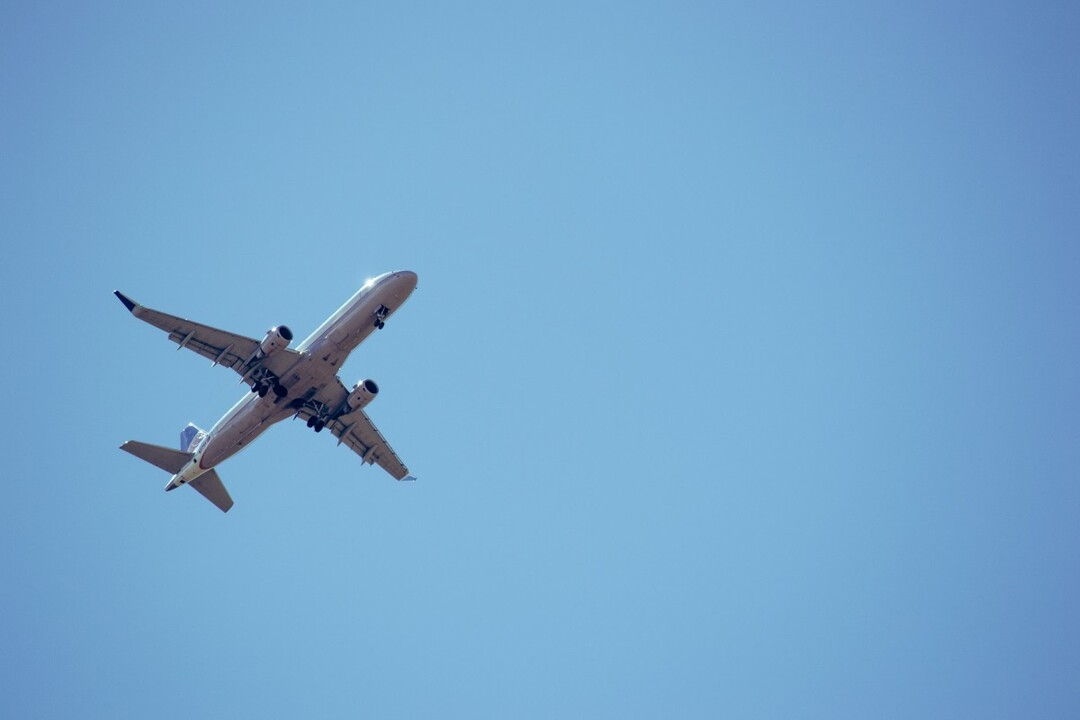 Российский интернет заполонили фейковые сайты по продаже авиабилетов