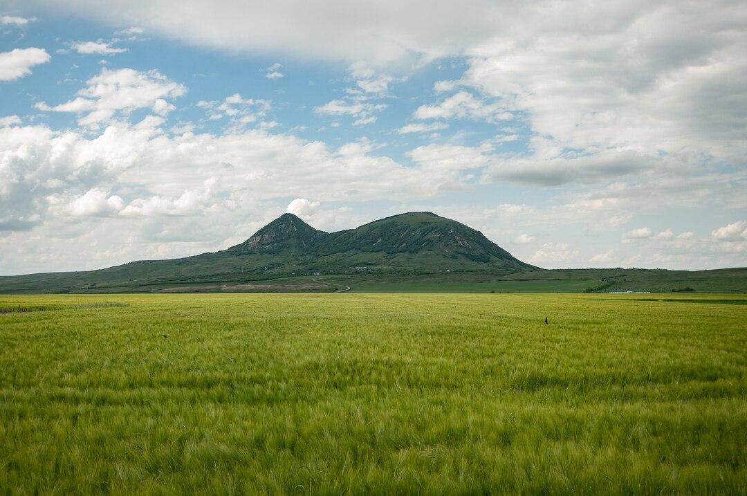 Чиновника Росимущества арестовали за разбазаривание земель на 168 млн рублей