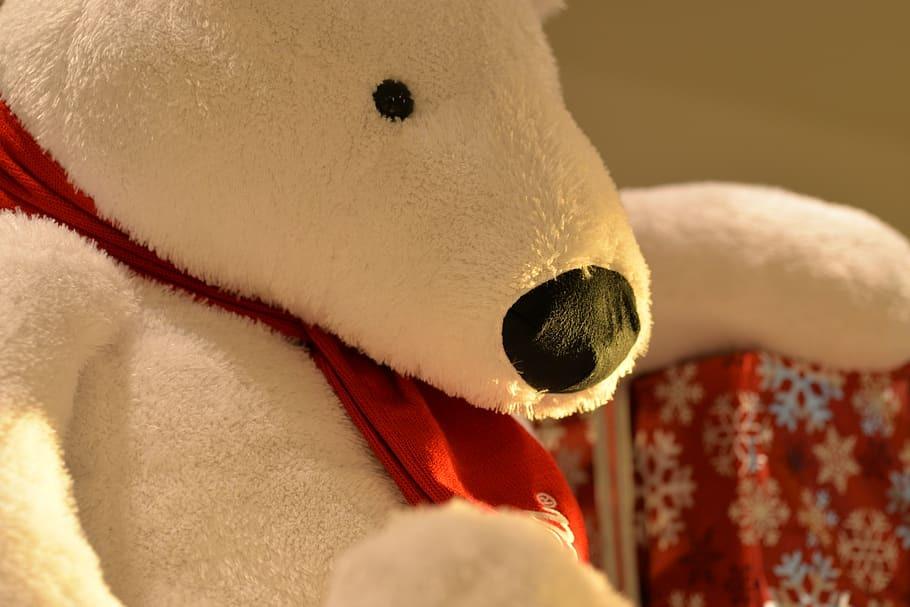 В России раскрыли кражу 3 млн рублей из плюшевого медвежонка