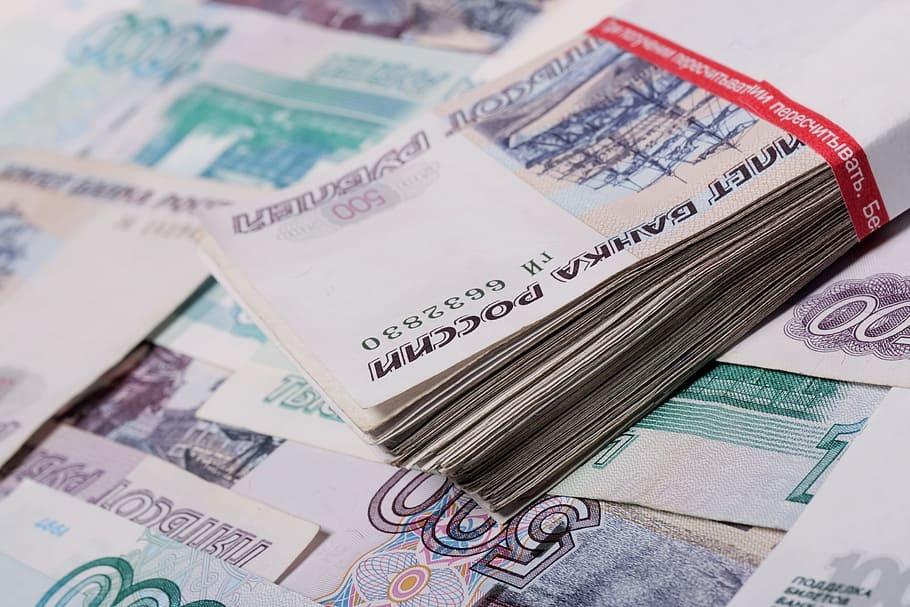 Ущерб от финансовой пирамиды Finiko оценили в 1 млрд рублей